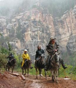 Horseback Hikers in Grand Canyon