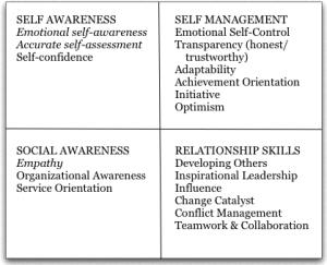 Emotional Intelligence 2.0 - 2